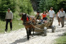 A family outing from Magura Transylvania