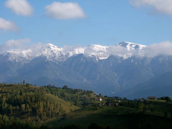 Bucegi Mountains, from Magura Transylvania
