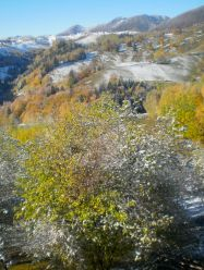 autumn colour and winter warning in Magura