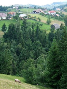 The village of Magura in the Carpathian Mountains, Transylvania, Romania