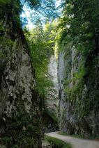 Magura Transylvania, remote village in rural Romania, 1,000m high in the Carpathian Mountains