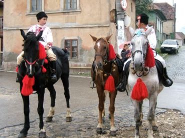 Boys and their horses all ready for the Harvest Festival