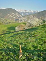 Magura Transylvania, remote village, Carpathian Mountains, Romania