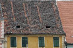 The eyes of Sibiu