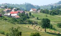 A village hayscape