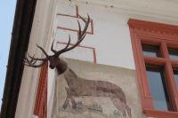 Statue or mural? Sighisoara