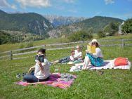 A Transylvanian book picnic