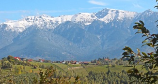 Bucegi with its first autumn snow. But the village meadows are green enough for Spring.